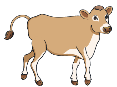 cow - BrownCow_2