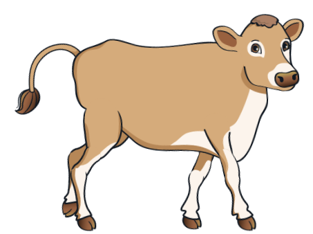 cow - BrownCow_3