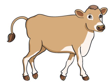 cow - BrownCow_4