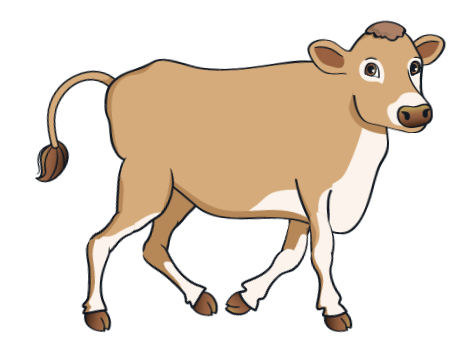 cow - BrownCow_5