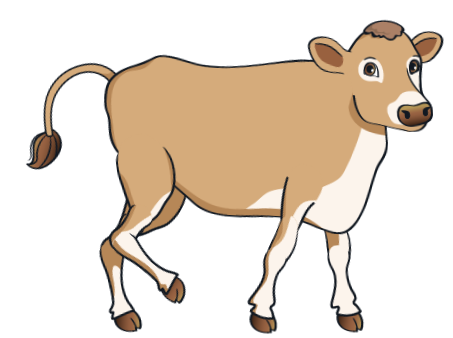 cow - BrownCow_10
