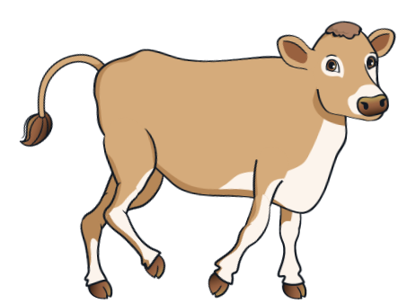 cow - BrownCow_11