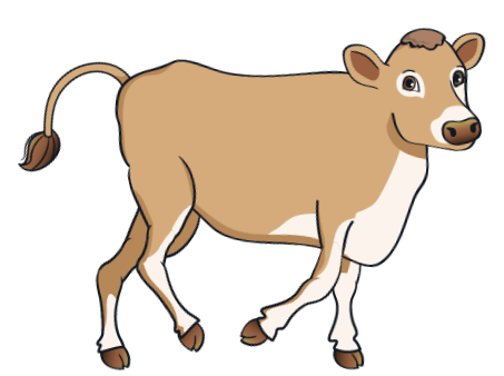 cow - BrownCow_12