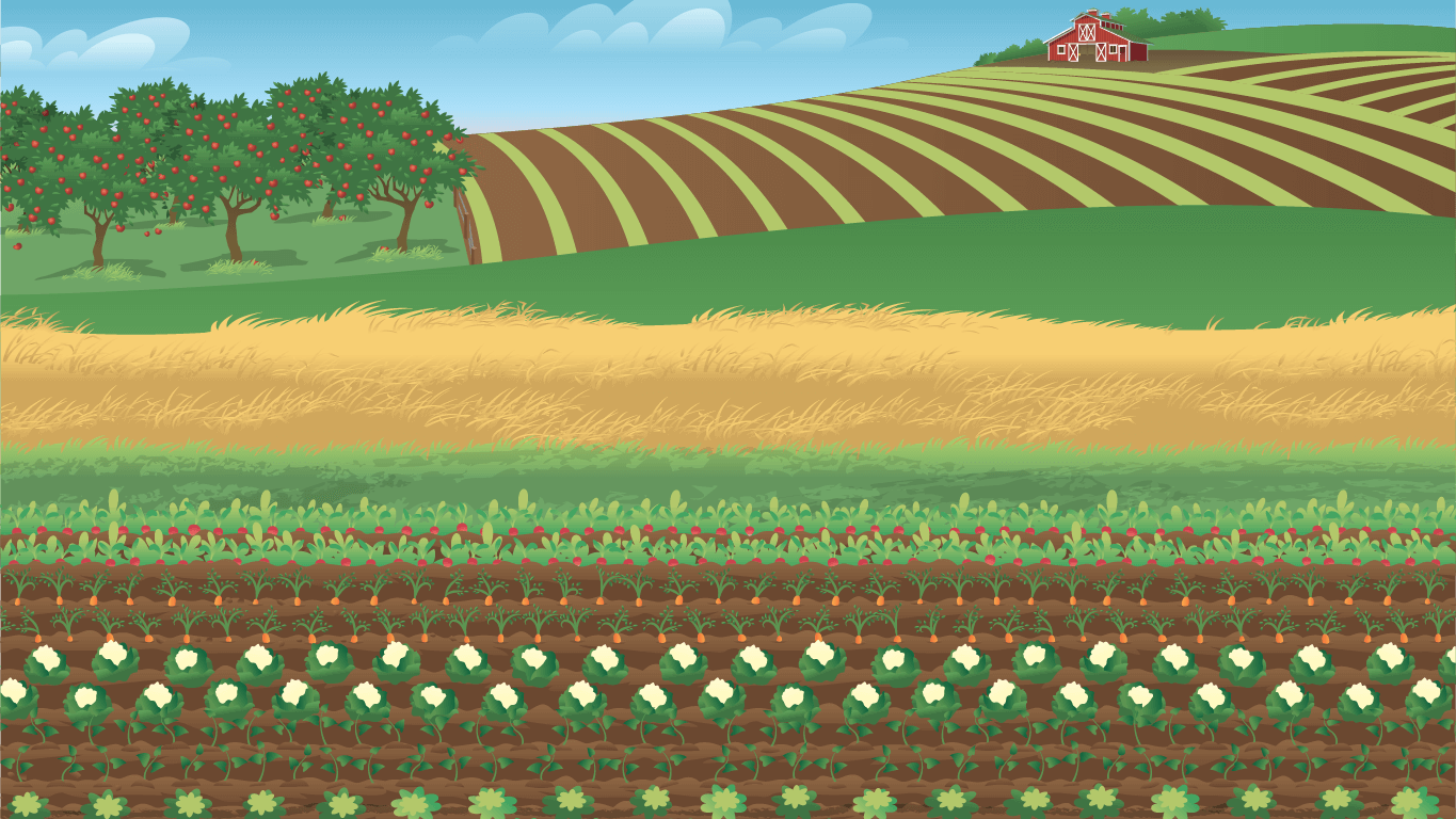 background scene - Field
