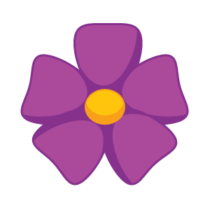 purple flower - flower