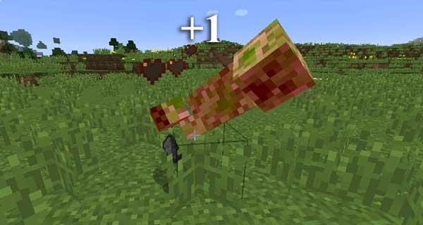 Minecraft | Tynker