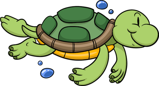 aquarium fish - turtle