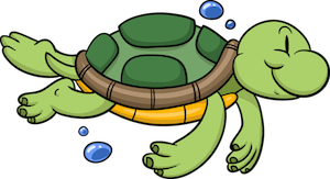 turtle_small - turtle_small