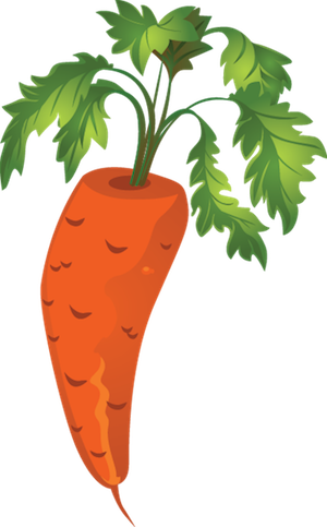carrot_small - carrot_small