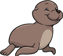 Igloo111 - Seal