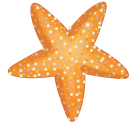 starfish-orange@3x - starfish-orange@3x