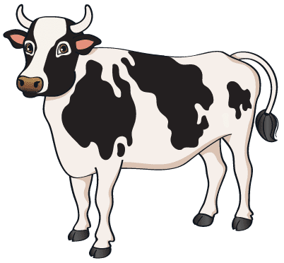 Cow - Cow
