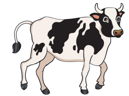 car - Black Cow 8