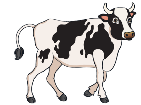 car - Black Cow 6