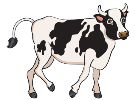 car - Black Cow 11