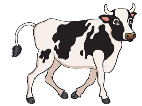 car - Black Cow 5