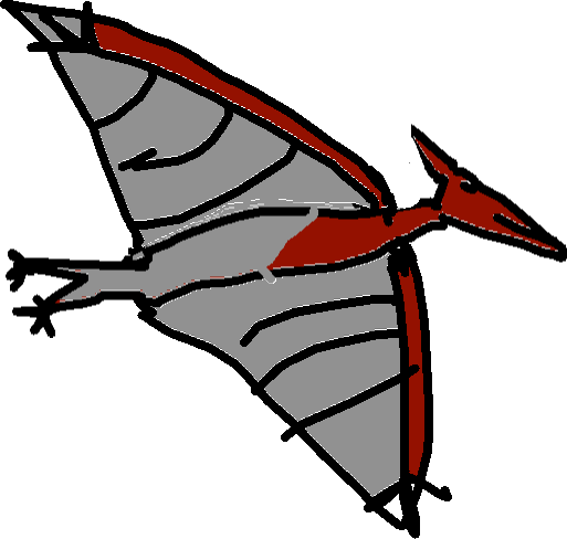 Pteranodon - drawing copy copy