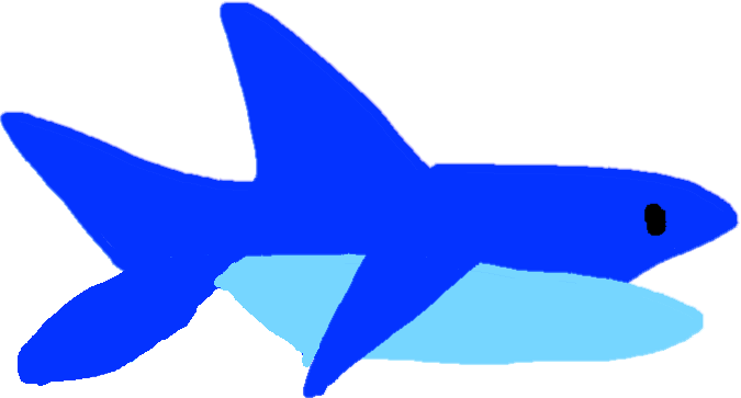 Shark - drawing