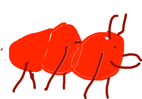 red ant1 - drawing