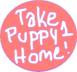 Take puppy 1 home - drawing