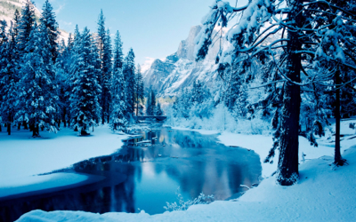 background scene - Winter
