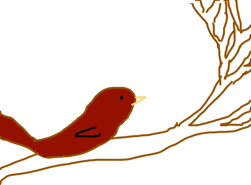 birb - drawing