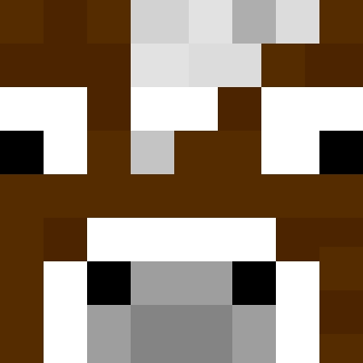 Minecraft Skin Personal Designer Tynker