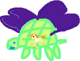 turtle - drawing