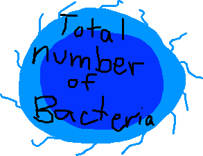 total numebr of bacteria - drawing