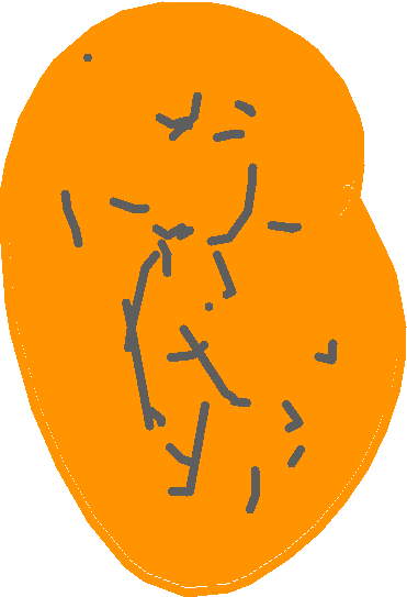 egg - drawing
