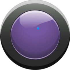 button11 - purple button off