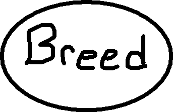 Breed Button - Button