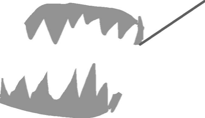 jaw - drawing