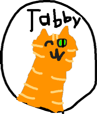 drawing6 - tabby