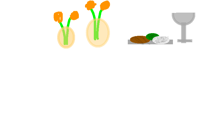 drawing1 - food
