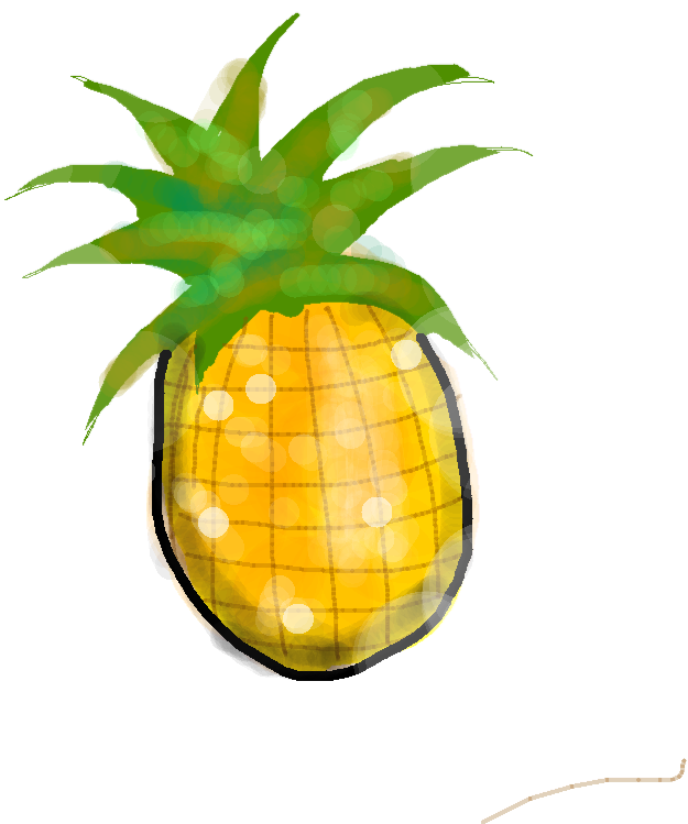 pinapple - drawing